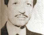 Mehmet Hulusi Bolay